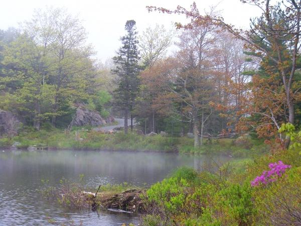 witch hole pond