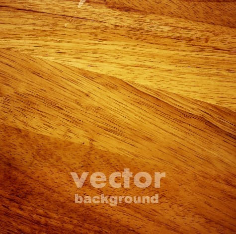 wood texture pattern background vector