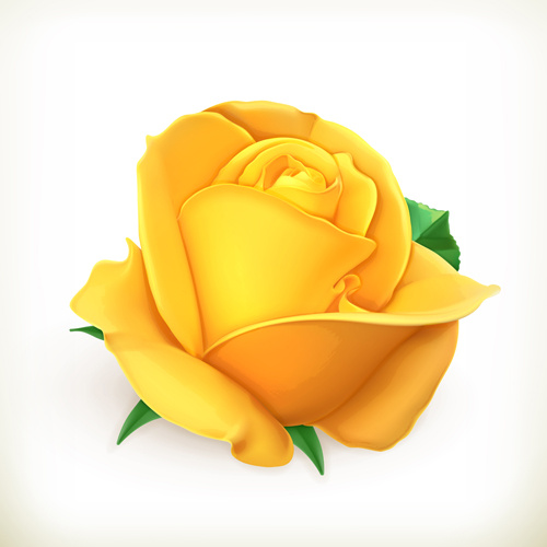 Yellow rose vector free vector in encapsulated postscript eps eps yellow rose vector mightylinksfo