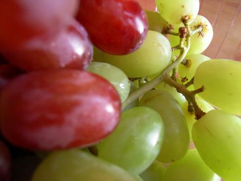 112365 grapes