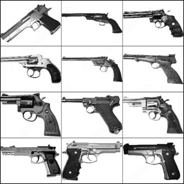 14 gun brush