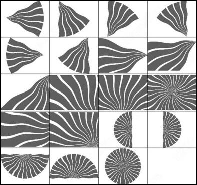 20 curled sun stripes brush