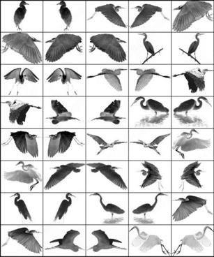 26 ps 7 egret brush