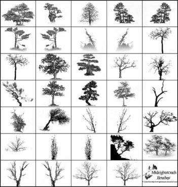 35 photoshop 7 tree brush