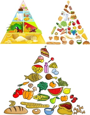 3 food pyramid vector