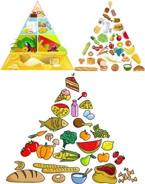 3 food pyramid vector
