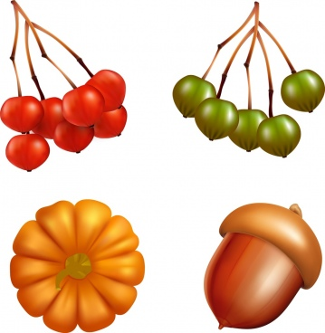 3d fruits icons sets chestnut pumpkin cherries icons