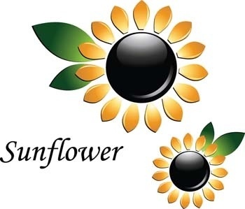 3d sun flower vector, flower vector ai, 3d vector ai illustrator, adobe illustrator photoshop 3d vector design, sun flower ai illustrator