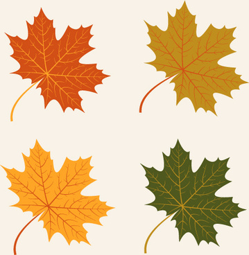 4 kind autumn leaves vector