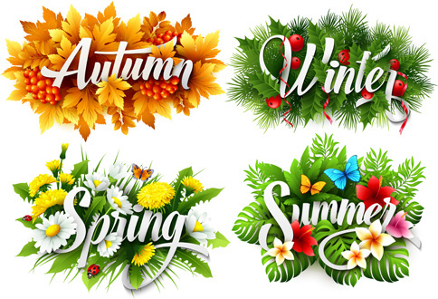 4 seasons beautiful flower labels vector