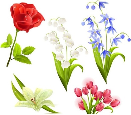 flora icons realistic colorful modern design