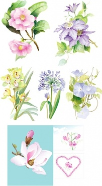 7 elegant watercolor flowers vector