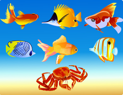 7 vector fish graphics