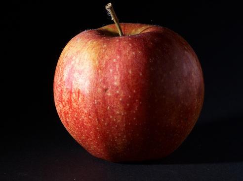 7dcp2025676 apple