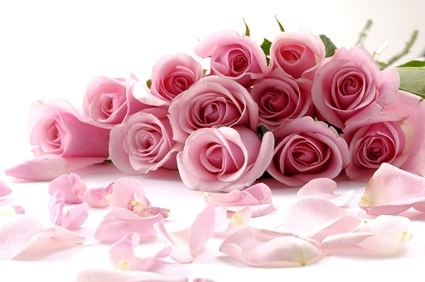 a bouquet of pink roses picture