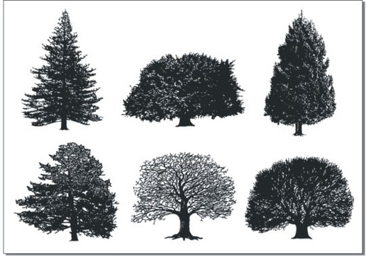 a monochrome tree vector