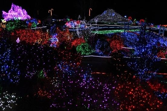a sea of christmas lights