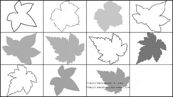 a set of 11 single leaf brush