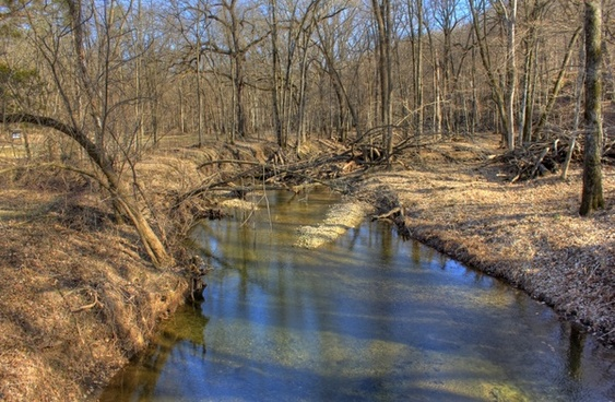 a small river at backbone state park iowa