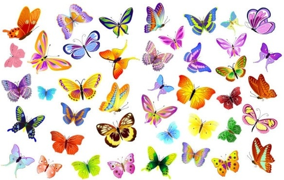 a variety of beautiful butterflies vector