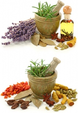 a variety of spices and garlic mortar highdefinition picture