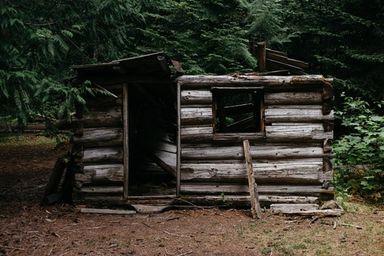 abandoned agriculture bench cabin daytime dwelling