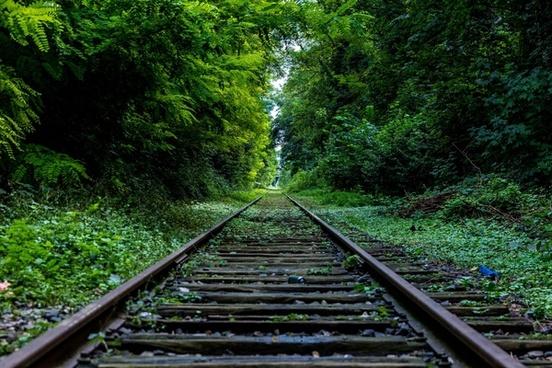 abandoned forest line rail railway rural track train