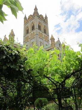 abbey church hope