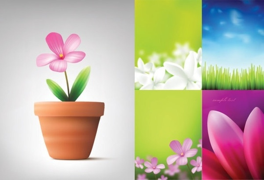 absolutely beautiful flowers and plant vector