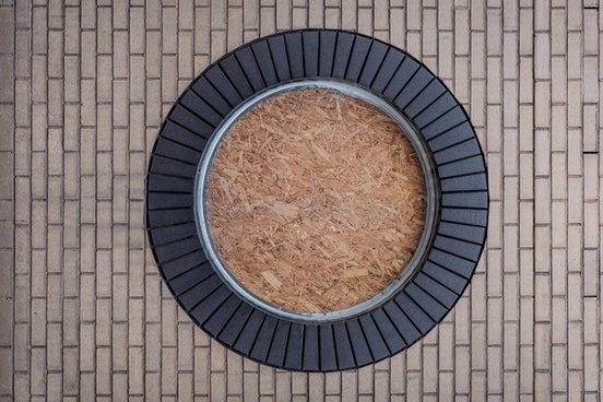 abstract background circle closeup dark delicious