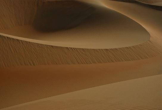 abstract camel desert desolate drought dry dunes