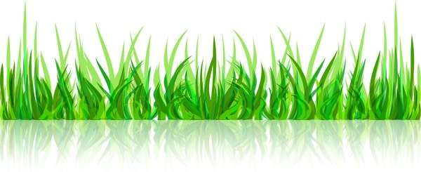 abstract green grass with reflection vector