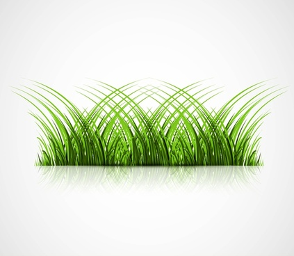 abstract green grass with reflection vector illustration