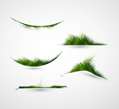 abstract shiny green grass collection vector frame illustration