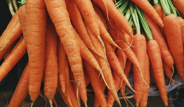abundance agriculture background bunch carotene