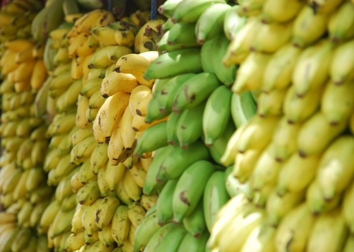 abundance agriculture banana cooking eating food