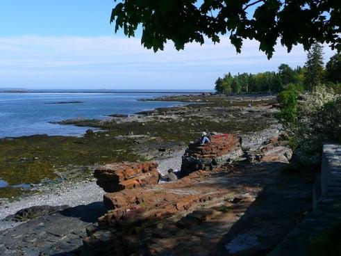 acadia national park shoreline water