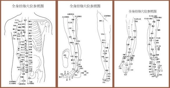 acupuncture meridian points with reference to the body map