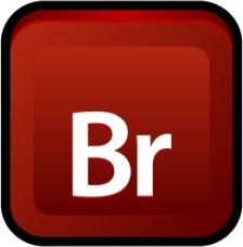 Adobe Bridge CS 3