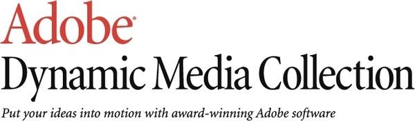 adobe dynamic media collection