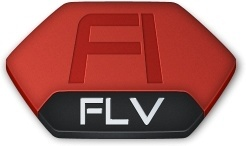 Adobe flash flv v2