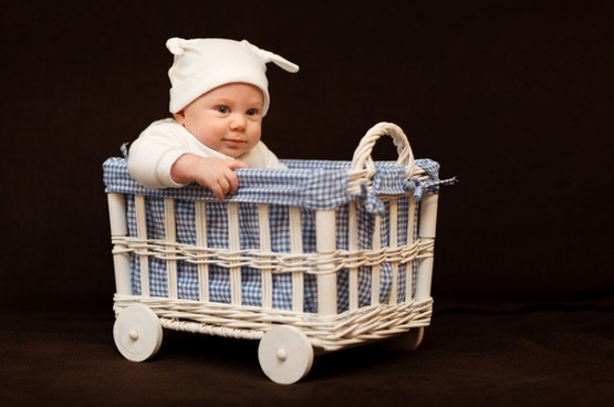 adorable baby basket