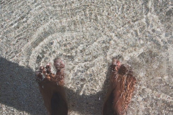 adult animal beach coastline environment feet foot