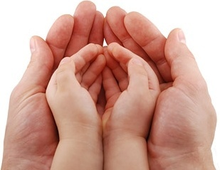 adult hands holding baby hands stock photo