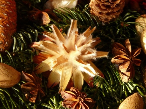 advent wreath seeds ornament