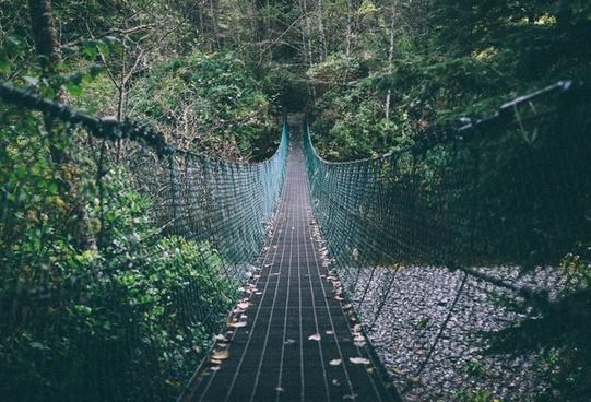 adventure architecture bridge cable connection