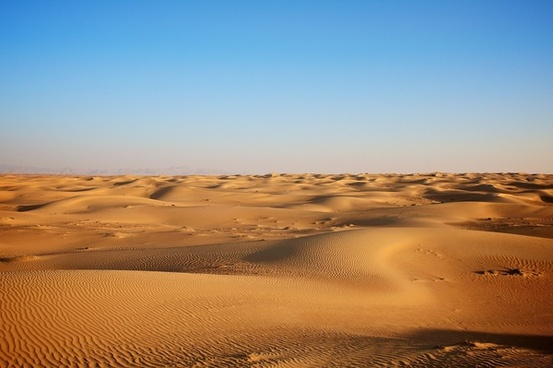adventure arid camel desert desolate dry dunes gold