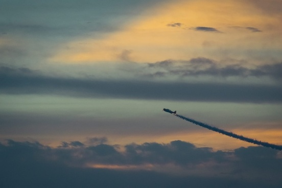 aeroplane airplane animal bird cloud dawn dusk