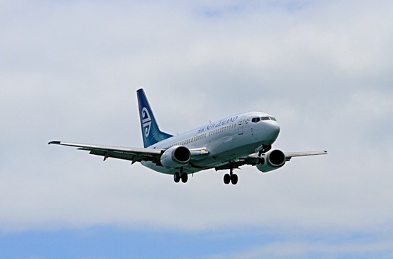 aeroplane boeing 737 air new zealand