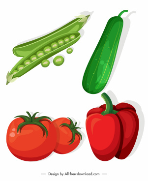 agricultural vegetables icons pea cucumber chili tomato sketch